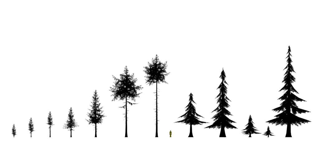 updated_trees.png